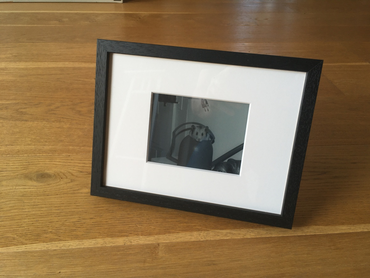 Smart Kindle Picture Frame